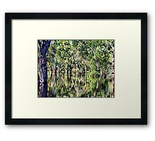 Even in destructive floods, beauty can be found Framed Print