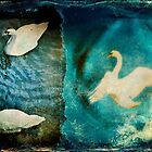 Old Swan Blues by missmoneypenny