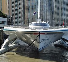 Solar Powered Boat Seen Front On by STHogan