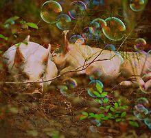 Precious Piggy Dreams by Chanel70