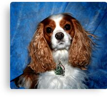Cavalier King Charles In Perfection Canvas Print