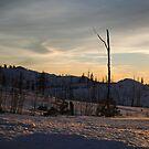 Sunsets Glow by NancyC