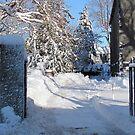 Snowy Gated Drive by Monica M. Scanlan