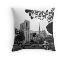 Notre Dame Sub Rosa Throw Pillow