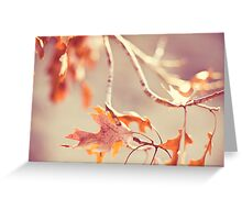 There are two kinds of light - the glow that illumines, and the glare that obscures.  Greeting Card