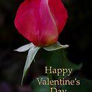rose bud valentine card by dedmanshootn