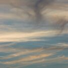 Sunset Shuffle by Lita Medinger