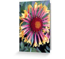 Floral Firework Greeting Card