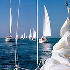 Sailing Regatta by RichPicks