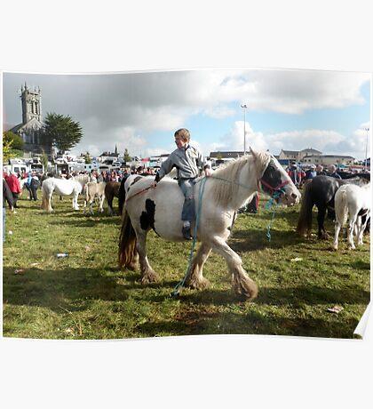 Horse fair Poster