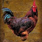 A Country Rooster by RickDavis