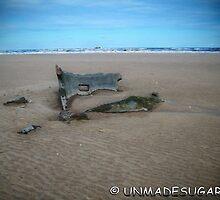 Beach Wreck by unmadesugar
