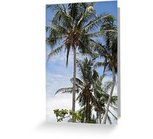 Coconuts on North Mission Beach Greeting Card