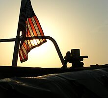 Stars, Stripes and the Sun by Chris Cardwell