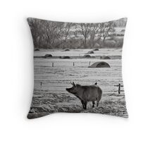 Slices of winter # 2 Throw Pillow