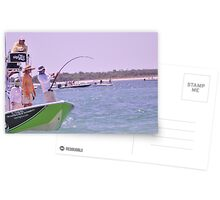 Team SignZoo Practicing for Tarpon Tournament Postcards