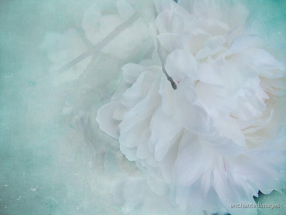 Remembrance by enchantedImages