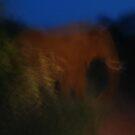 night blur by mellychan