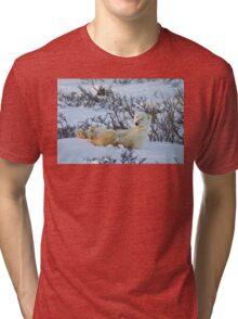 Yoga Bear seated silly Tri-blend T-Shirt