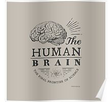 Science - Human Brain Poster