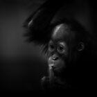 Shhh by KatsEyePhoto