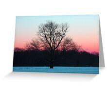 Peaceful Air Greeting Card