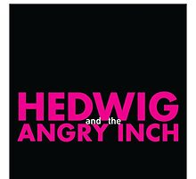 Hedwig and the angry inch by Oh look!  My feelings!