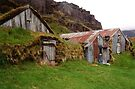 grass houses, Iceland by Margaret  Hyde