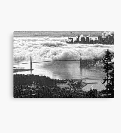 Urban Eiderdown Canvas Print