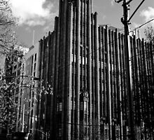 The Manchester Unity Building Melbourne by skyebelle