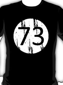 Big Bang Theory 73 T-Shirt