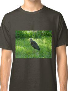 Baby Green Heron Classic T-Shirt