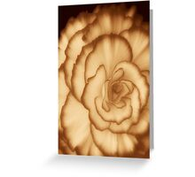 Carmel Cream ©  Greeting Card