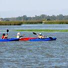 Kayaking on Fern Ridge Lake by scenebyawoman