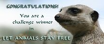 Let Animals Stay Free Challenge Banner by Joanne Emery