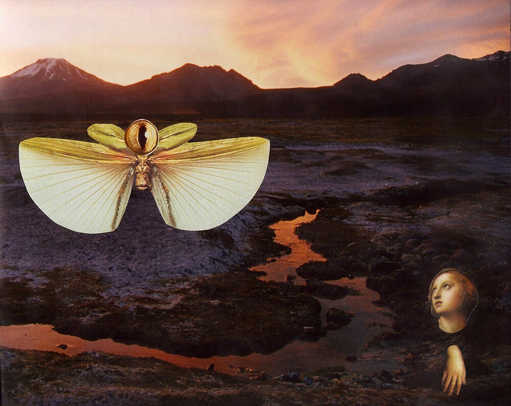M Blackwell - The Sentinels of Sunset Ridge by IWML