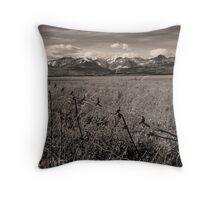 Prairie to Peak (BW) Throw Pillow