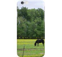 Pastureland iPhone Case/Skin
