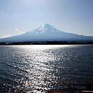 Distant Mt Fuji by mjds