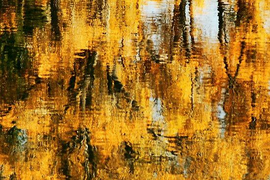 Water Colours by Ann  Van Breemen