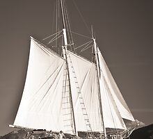 """Windjammer""- Toned by Tim Wootton"