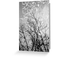 Nothing Written in the Sky Greeting Card