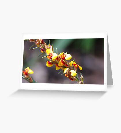Gold Bug Greeting Card