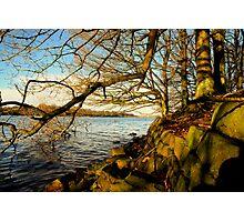 """WATERS EDGE"" Photographic Print"