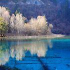 Five Flower Lake, Jiuzhaigou Valley, Sichuan, China by Ka Hei Tsui
