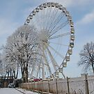 Chester Big Wheel by AnnDixon