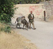 Scenes from rural life in Turkey by Denzil