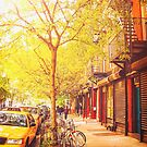 Autumn - New York City by Vivienne Gucwa
