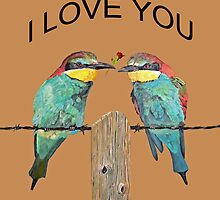 I LOVE YOU, bee-eaters by Eric Kempson