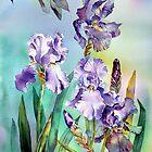 Irises and Eucalyptus by Ann Mortimer